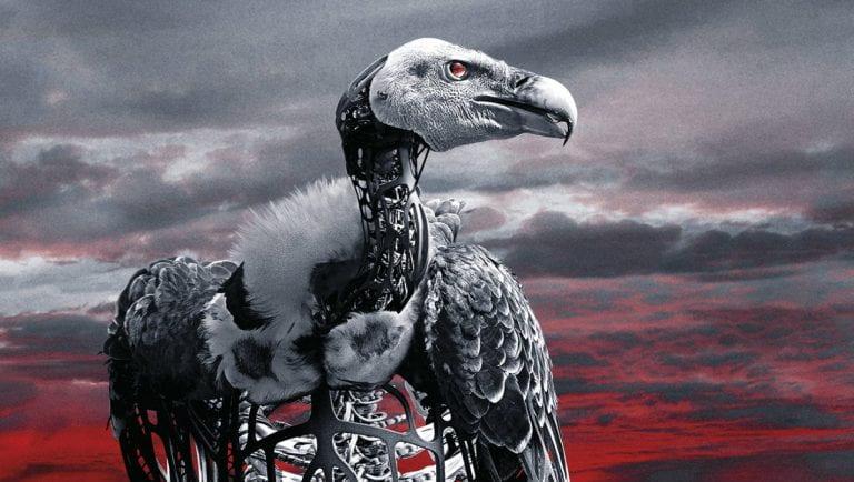 A robot vulture
