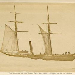 Sir Allen William Young's ship the Pandora