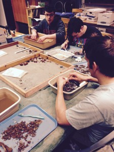 Students participating in the Grafton field school wash and brush the artifacts collected from their units.