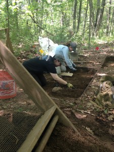 Students excavate their units in Hassanamesit Woods.