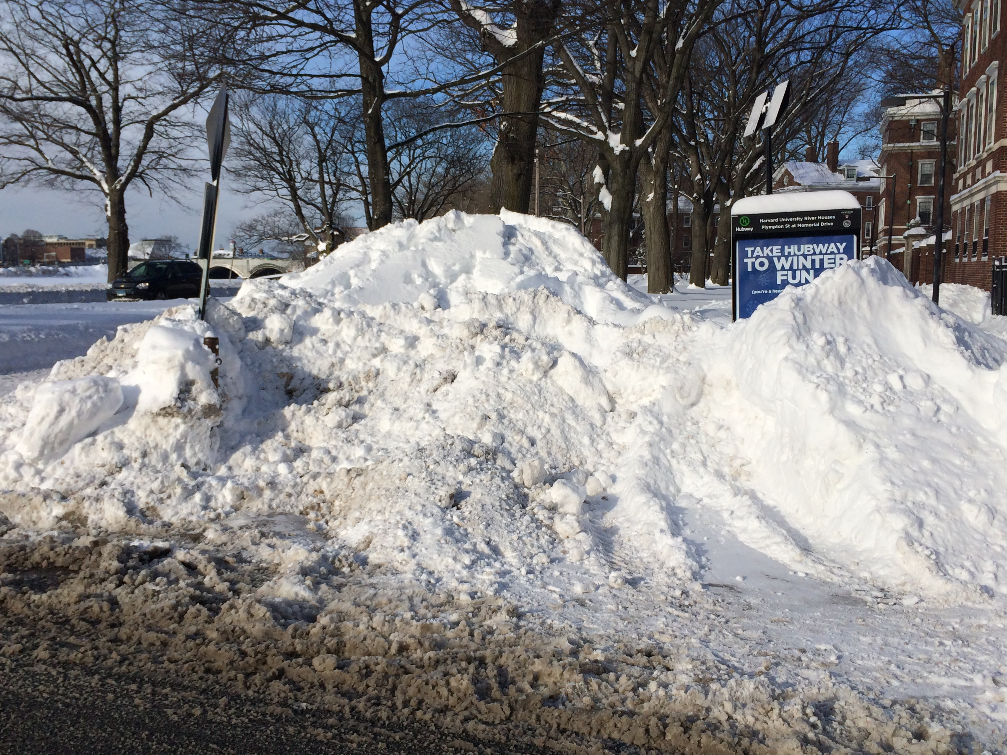 Snow Pile Pictures to Pin on Pinterest - PinsDaddy