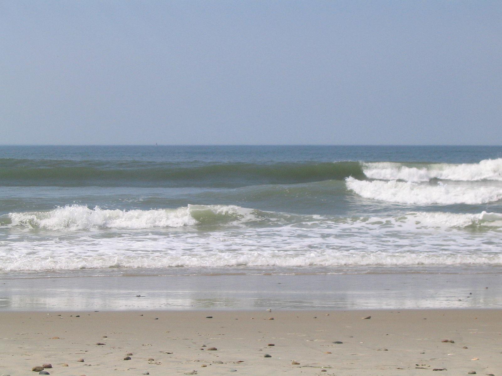 NE Surf Report