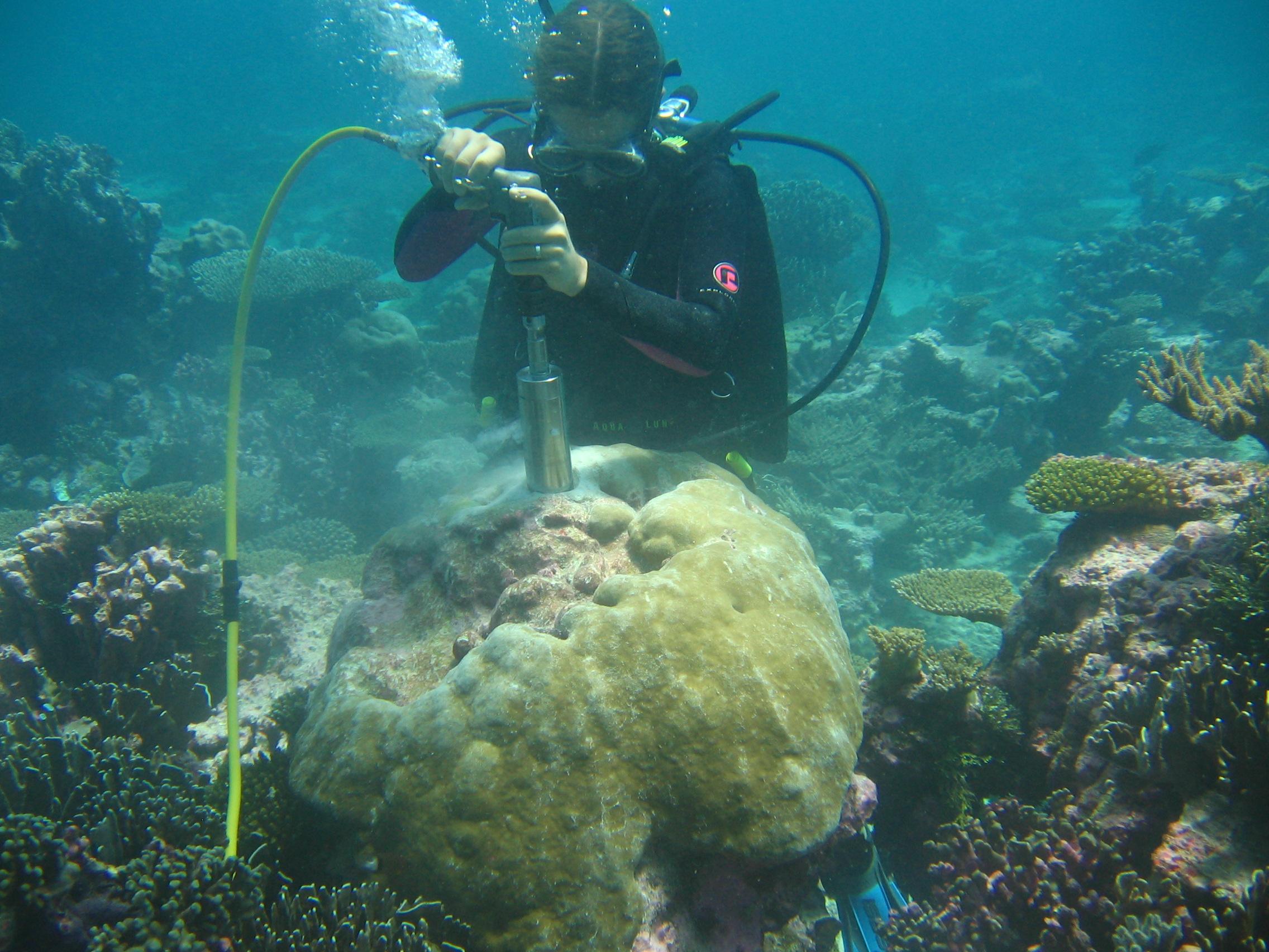 Coral coring in Kiribati