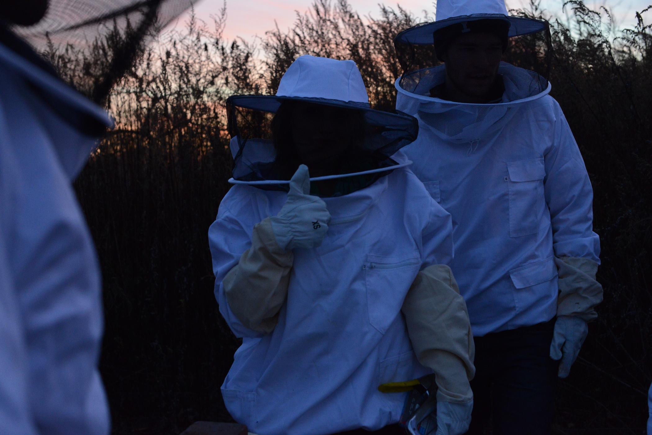 Bee Secrets