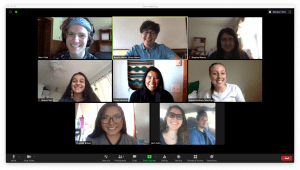 Screenshot from Zoom of all Summer 2020 lab members