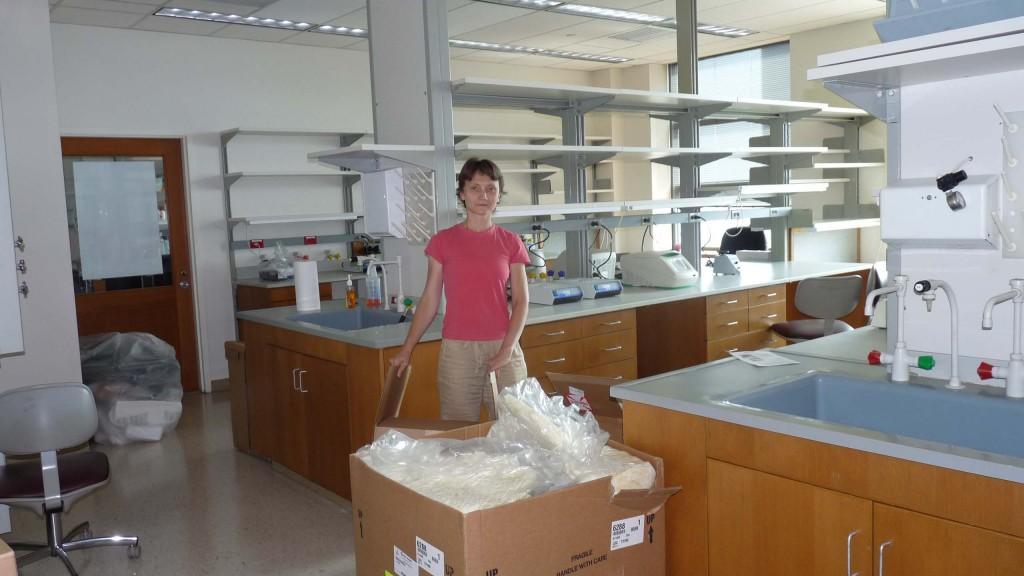 lab start 3