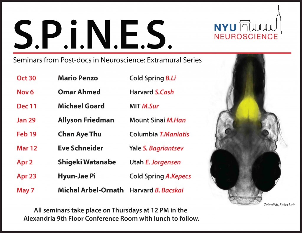 2014-2015 SPiNES Flyer