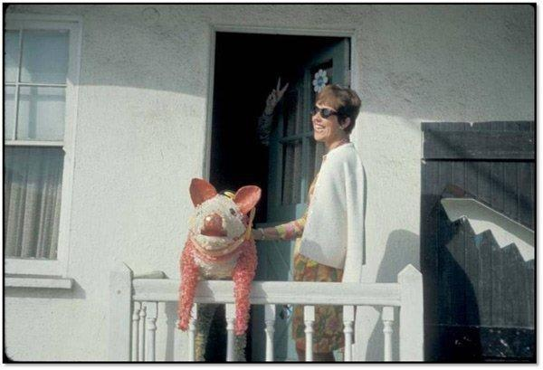 Thomas Pynchon hides from a photographer, placing a pig piñata in his stead.