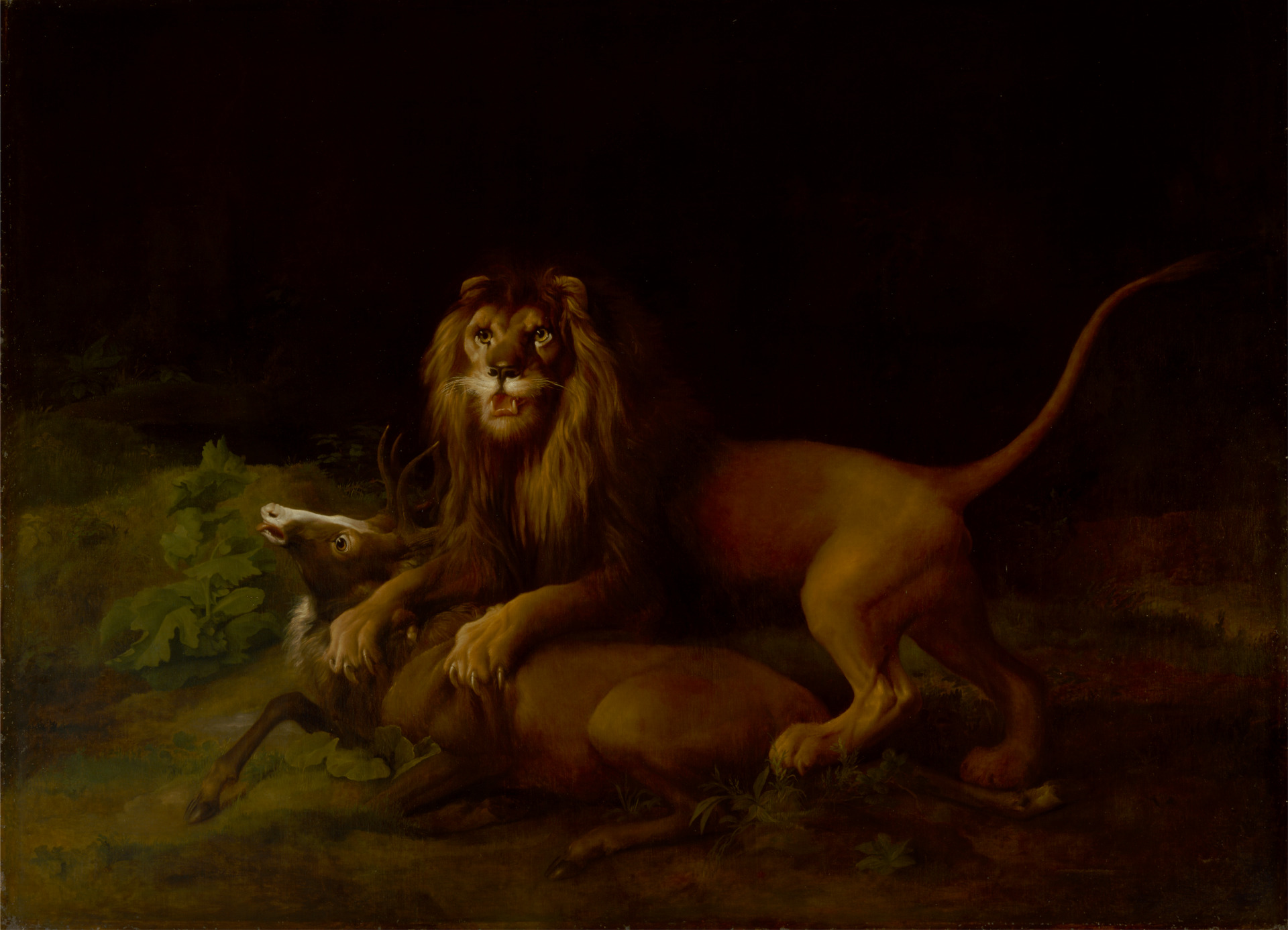 A Lion Attacking a Stag, George Stubbs, 1765-66