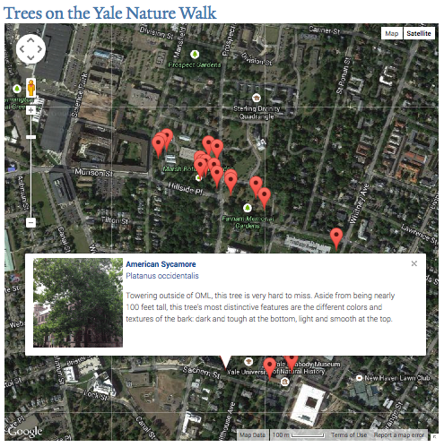 The map on the home page of the Yale NatureWalk