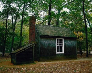 Reproduction of Thoreau's cabin at Walden Pond / Courtesy of Dickinson College