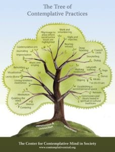 Photo of Tree of Contemplate Practices