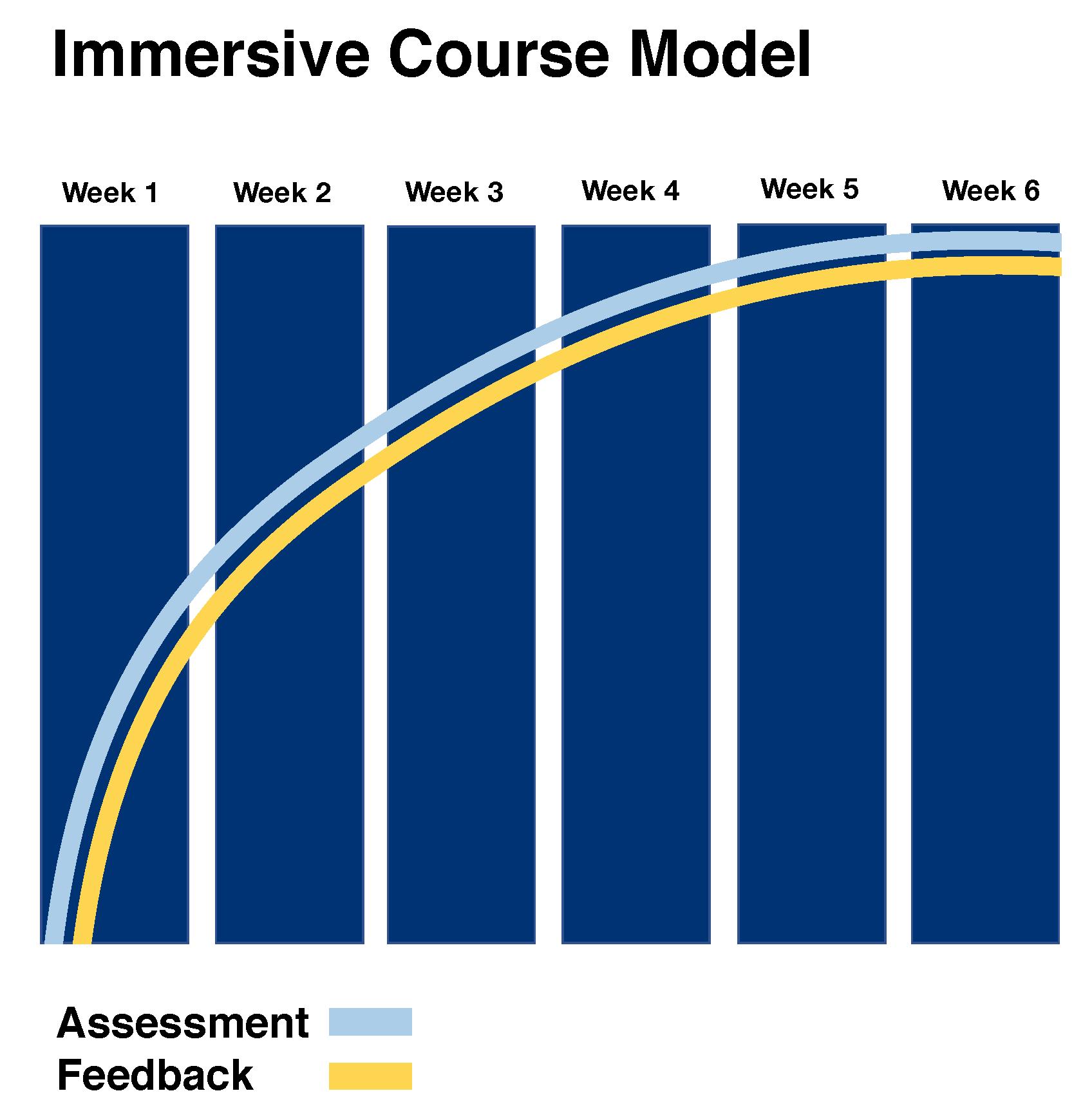 Immersive Course Model