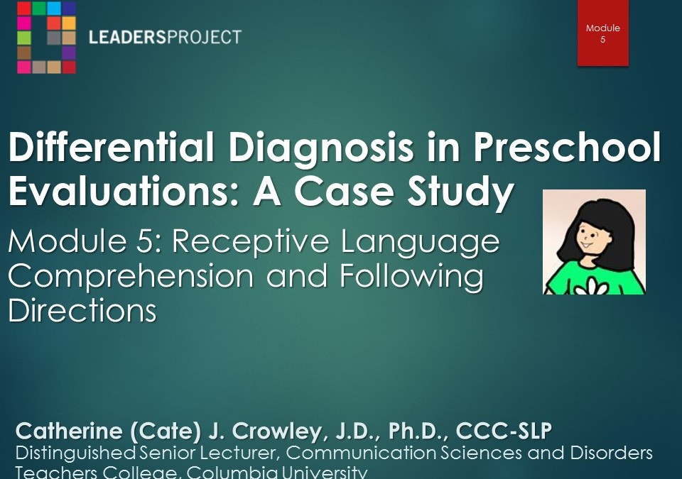 Receptive Language Comprehension and Following Directions (DDPE Playlist: Module 5)