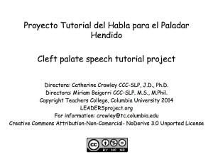 El Pollo Pepe Copyright