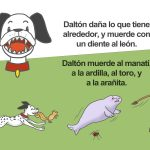 T&D(Spanish)_Gallery14