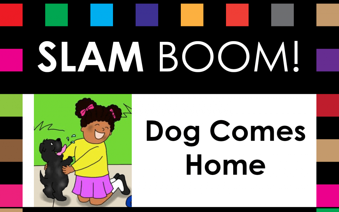 SLAM BOOM! Video on Access & Use