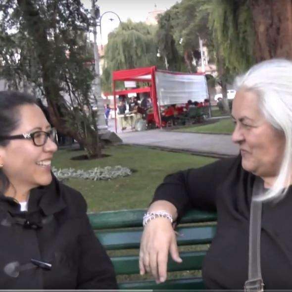 Fotograma del vídeo, muestra dos personas hablando sentadas en un banco en un parque/Picture form the video, 2 people speaking while sitting in a park bench