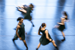 Meadows: Thriving in a Company of Dancers