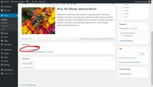 Under the discussion section Allow comments checkbox is checked, circled