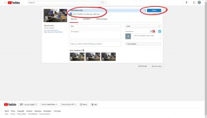 Processing done stated on upload bar, circled and publish button available on the right, circled