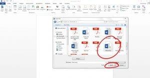 File Window with Microsoft file circled