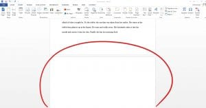 Blank page of Word Document circled