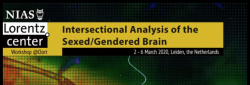 Conference logo: Intersectional Analysis of Sexed/Gendered Brain