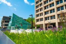 Summer photo of New Paltz campus