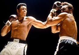 Boxing_260px.jpg