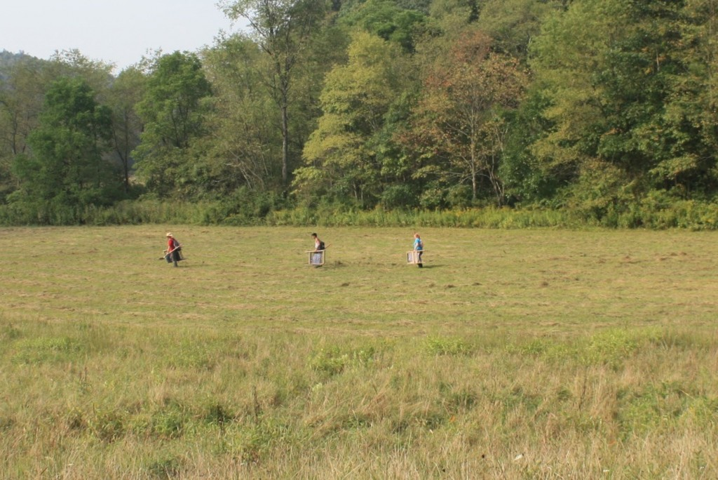 Crew walking across floodplain