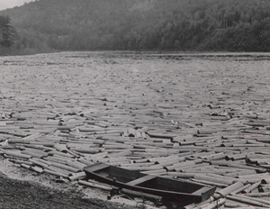 Pulpwood logs almost completely covering the surface of the Hudson River as they float near Lake Luzerne, NY. An empty boat is hemmed in by the logs along the shore, May 24, 1931.