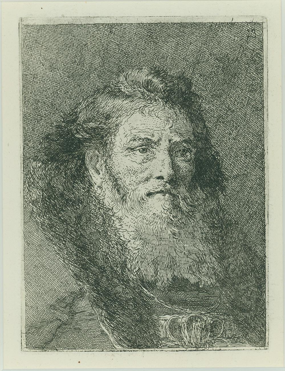 Untitled Portrait by Giovanni Domenico