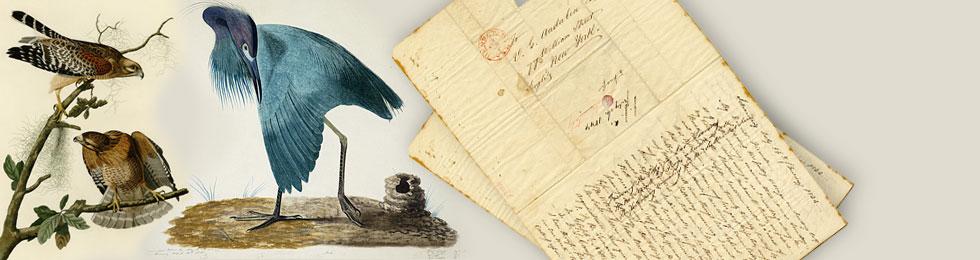 "John James Audubon's ""Magnificent Obsession"""