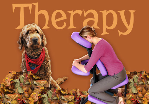 Fall Therapy November 8th & 14th