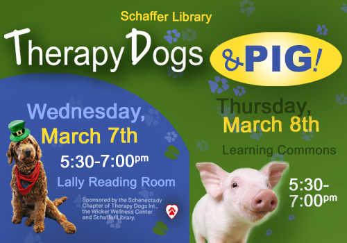 Therapy Dogs and Pig!