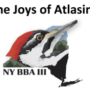 The Joys of Atlasing: Recording Now Available