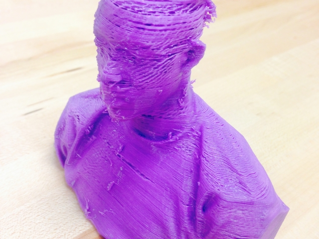 3-D Printed Head Scan.