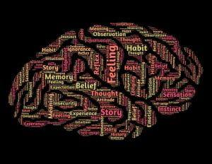 Image: brain word-cloud