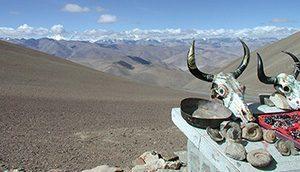 photo of Himalayan skulls