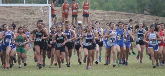 Cross country races toward district