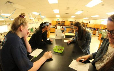 Students solving problems in AP Environmental Science class.