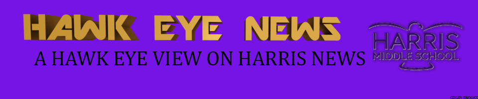 The Hawk Eye News