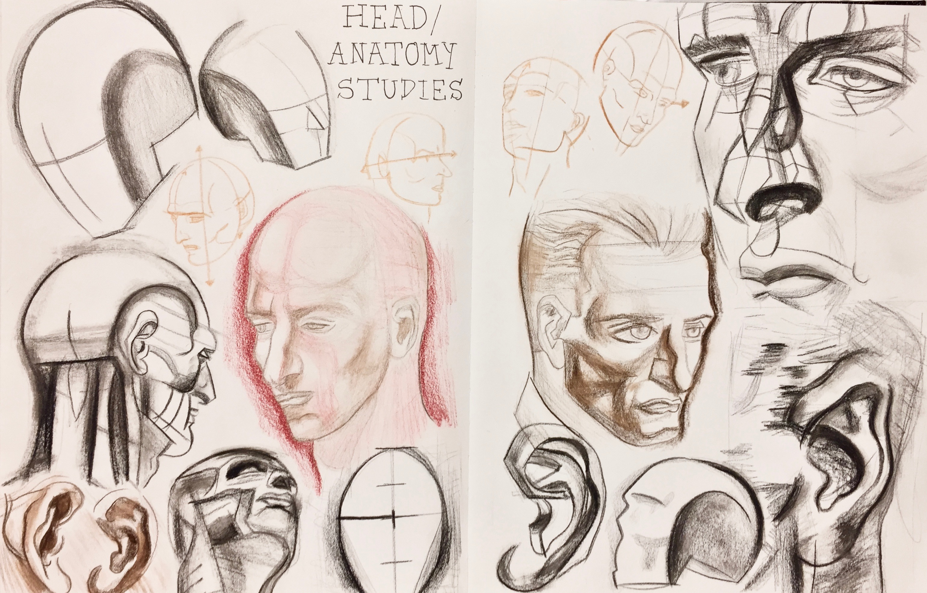 Head/Anatomy Sketchbook Study