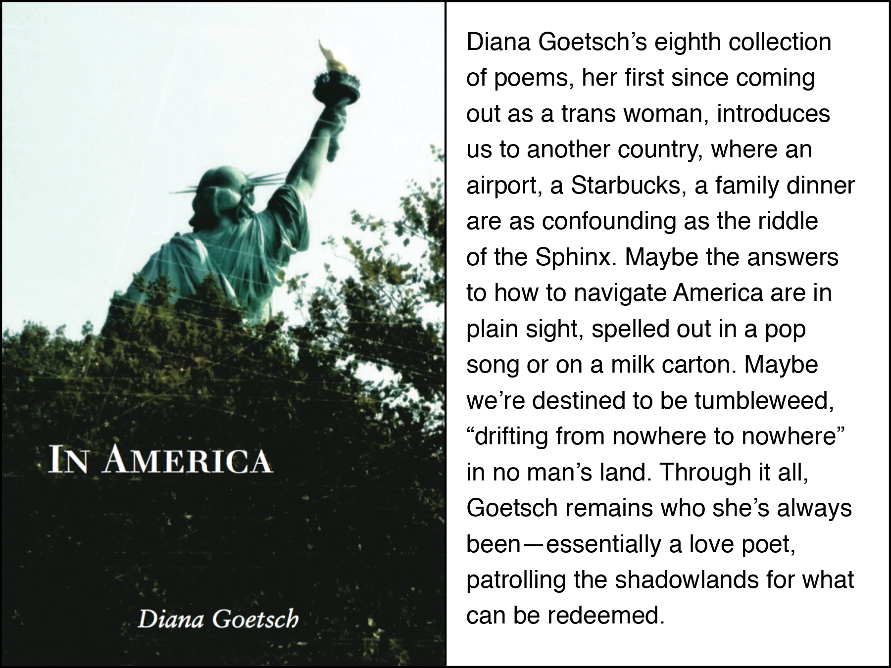 Diana Goetsch's newest poetry collection now out