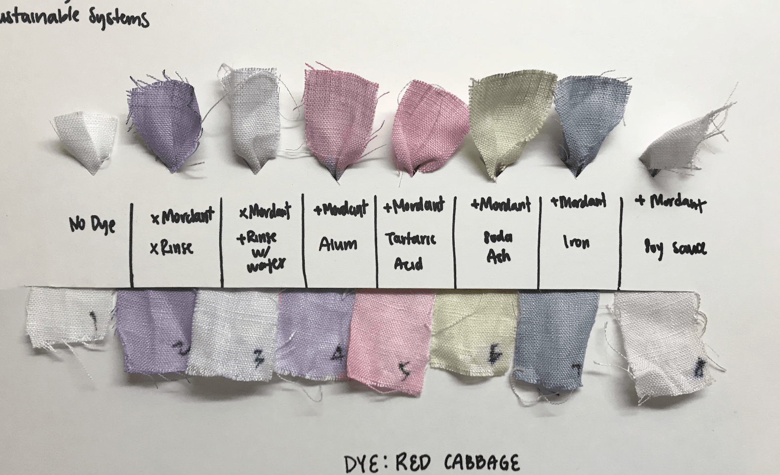 Natural Dye Cold Process