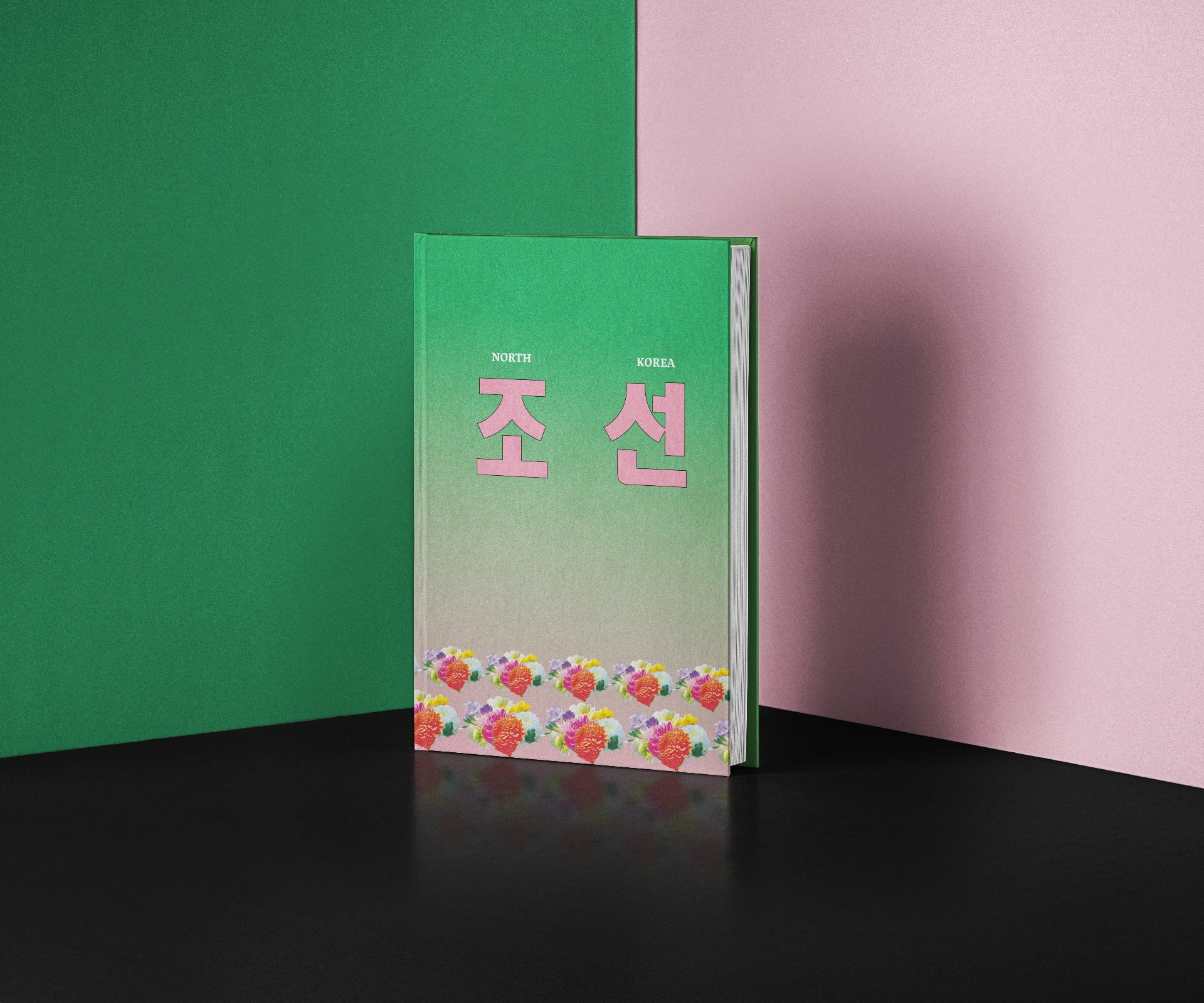 Core Studio Typography: Wikibook: North Korea