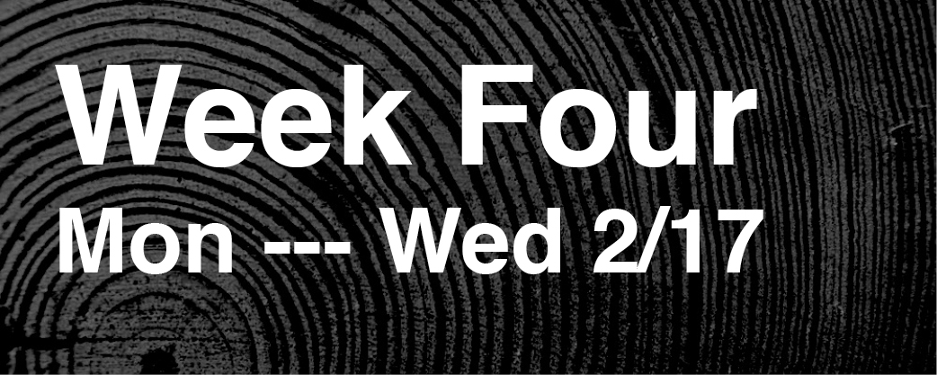 Week 4 – 02/17