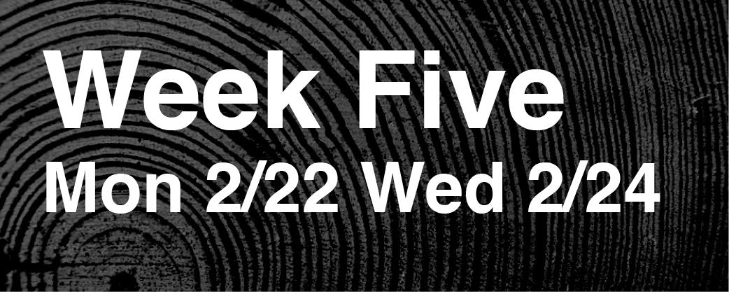 Week 5 – 02/22 + 02/24