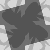 f16_di_sst_roman_johanna_patternvaltrans03